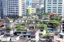 green-roofs-china