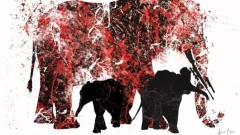 elephants-are-still-being-killed-for-ivory
