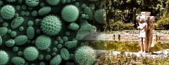 pollen-brings-ancient-royal-garden-to-life
