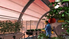 nasa-food-project-on-mars