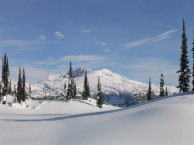 snow-fields
