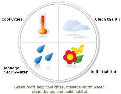 Основные функции зеленых крыш в городе