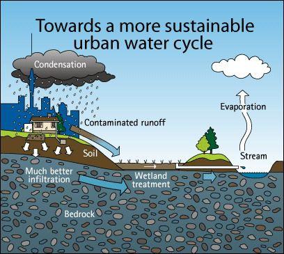 Примеры устойчивых ландшафтов - жизнь в мире с дождем