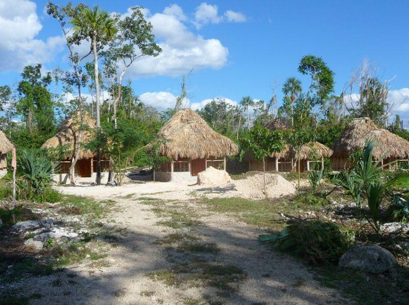 В эко-деревне посреди леса туристы могут переночевать