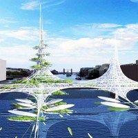 Плавающая солнечная ферма имеет низкую себестоимость