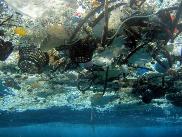 Сколько пластикового мусора плавает в океане?
