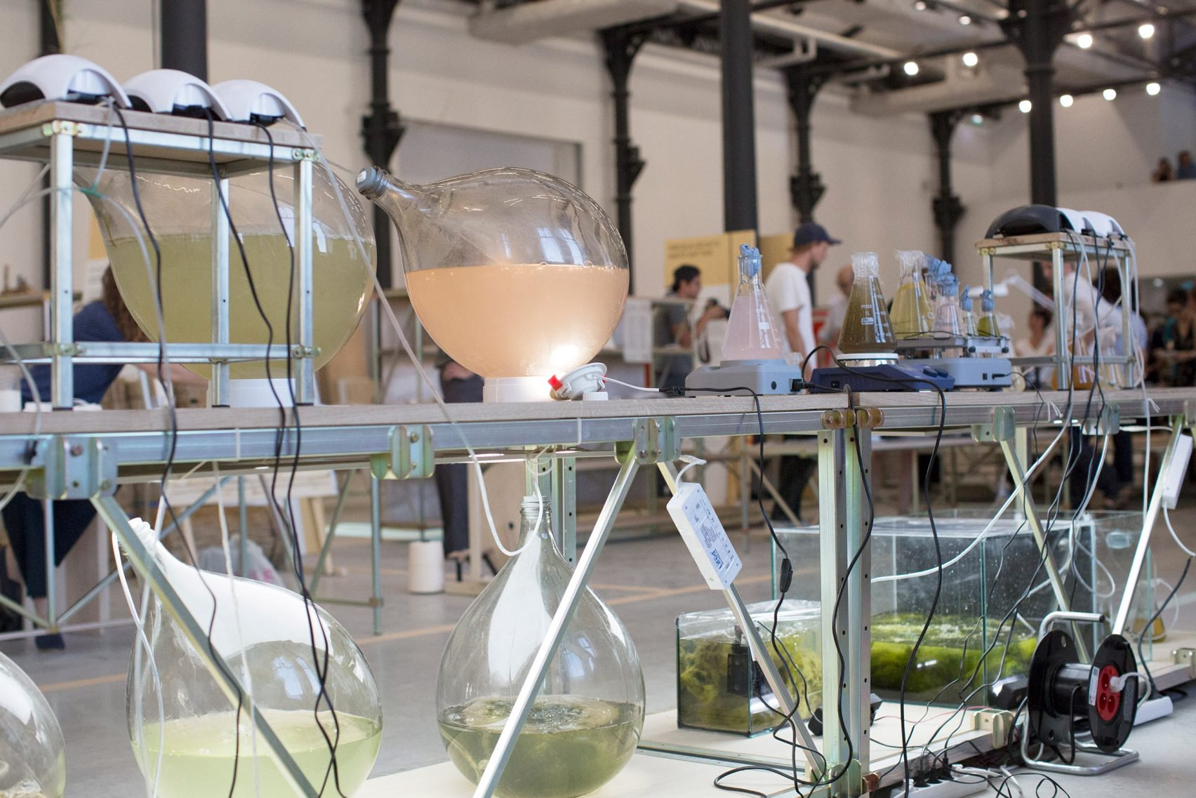 Биопластик из водорослей
