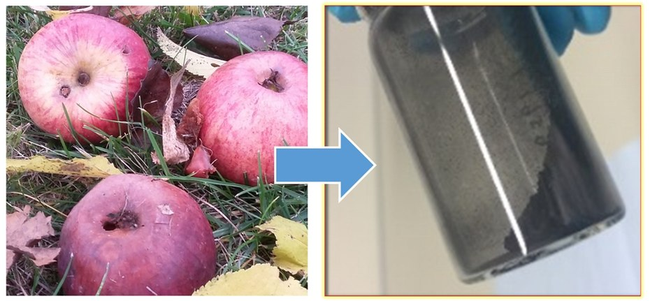 Дешевые высокопроизводительные зеленые батареи работают на гнилых яблоках
