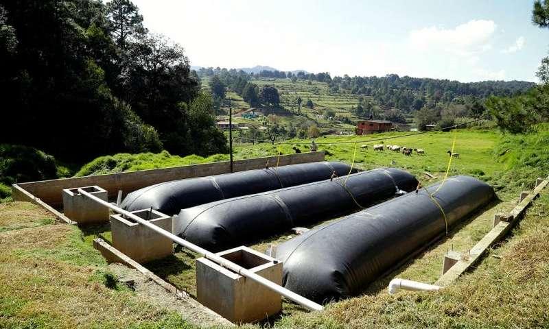 Биореактор обеспечит энергией 3 000 фермерских хозяйств. Facepla.net последние новости экологии