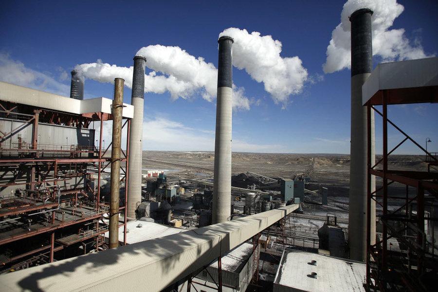 Искусственные растения превращают парниковый газ в чистый воздух