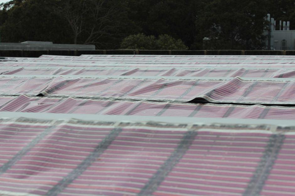 Печатные солнечные панели скоро появятся на рынке