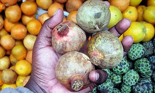 фрукты Амазонки