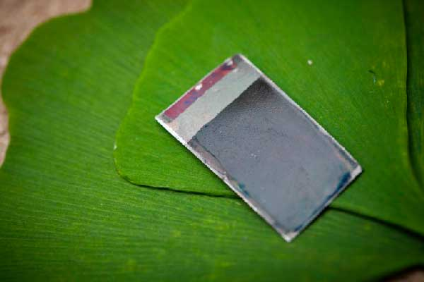 artificial-leaf-healing