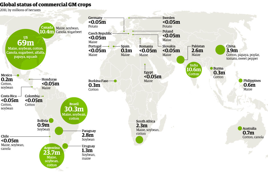 world_GM_crops