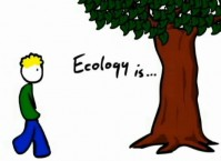 ecology-is-video