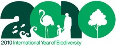 about-international-year-of-biodiversity