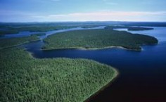 pact-protects-canadian-forests