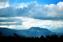 saving-philippine-rainforests-of-mt-apo