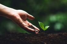 4-things-everyone-can-do-to-protect-the-planet-s-soil