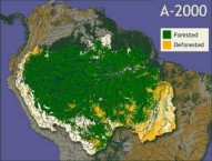 an-end-to-deforestation-in-the-amazon