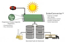 co2-and-sun-to-biofuel