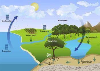 Примеры устойчивых ландшафтов