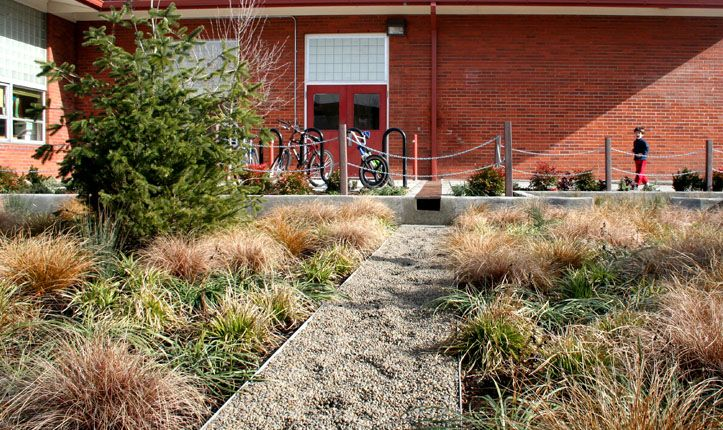 Сад дождя средней школы Mount Tabor, Портланд, США