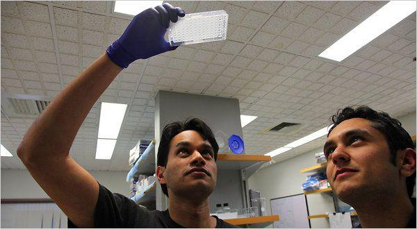 От теории к практике - синтез молекул РНК в Стэнфордском университете