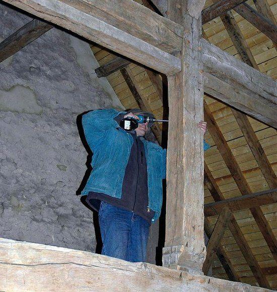 Снятие пробы со ствола, входящего в конструкцию альпийской хижины
