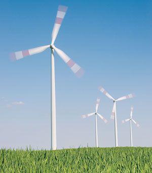 Ветряки улучшают микроклимат близлежащих полей