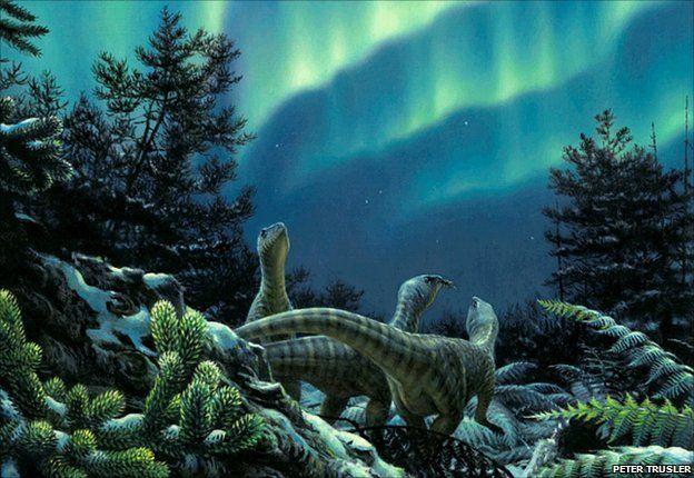 Секреты окаменевших лесов Антарктики