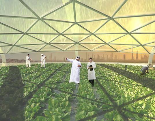 Морская вертикальная ферма от Studiomobile: внутри