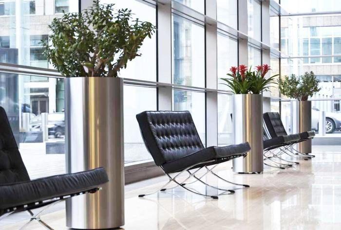 Легкие способы сделать ваш офис «зеленым»