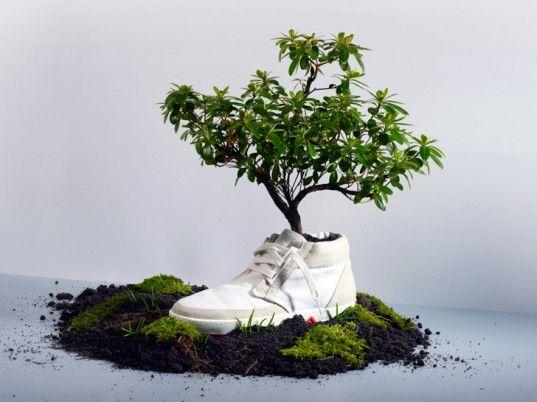 Биоразлагающаяся обувь