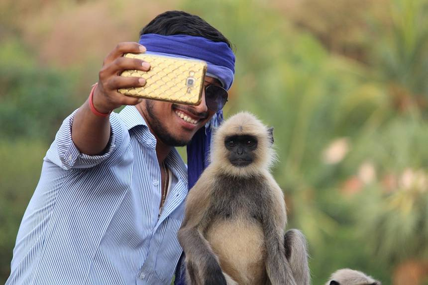 Phone-Camera-Boy-Mobile-Monkey-Selfie-With-Monkey-3446978.jpg.860x0 q70 crop-scale