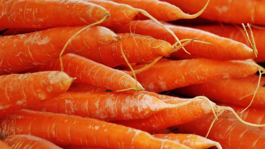 Морковь может стать ключом к прочному бетону