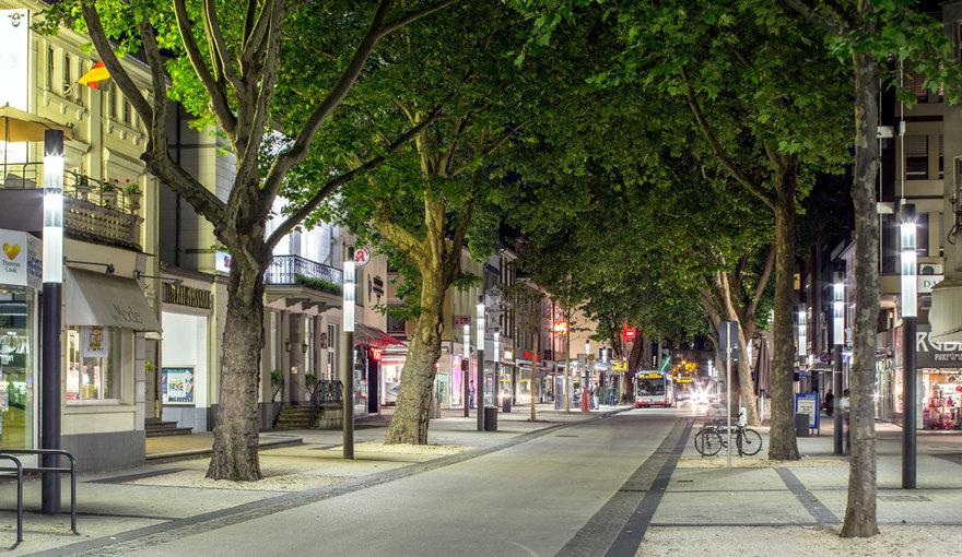 Деревья в городах могут улавливать столько же углерода, как тропический лес