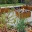 Najpiękniejsze rośliny doniczkowe na taras i balkon