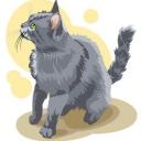 Многим хозяевам нравится наблюдать, как их кошки садятся на задние лапки и просят. Некоторые кошки только для виду на пару секунд принимают эту позу перед тем, как вновь свалиться и уснуть.<br /><br />Как научить кошку сидеть на задних лапах ⓘ  http://prokoshek.ru