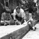 Хэминг. дети и коты
