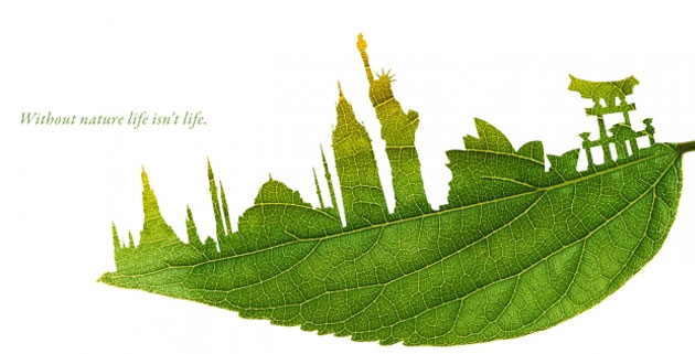 Leaf-Illustrations-Plant-for-the-Planet